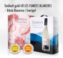 Bästa boxarna i Sverige - dubbelt guld till Les Fumées Blanches!