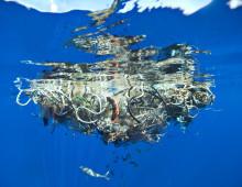 Världsvattendagen uppmärksammas med utställning om plast i haven