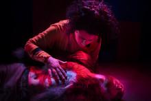 Min bror är Don Juan – musikalisk thriller med filmisk känsla