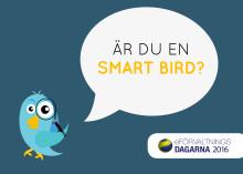 ÄR DU EN SMART BIRD?