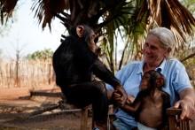Nu kan du boka föreläsning med Ann Olivecrona – Mitt Africa!