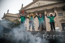 Vrede oprindelige brasilianske folk i Berlin: Stop med at dræbe skovene!