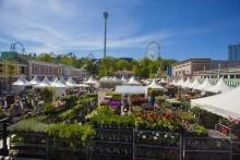 Årets trädgårdstrender gör entré på Lisebergs trädgårdsdagar