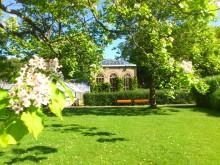 Populärt picknickmål med lianer och växthus