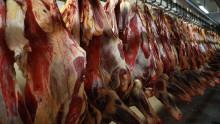 Danish Crown indstiller slagtningen af grise i Mecklenburg-Vorpommern