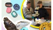 Kulturhistorie og naturvidenskab i tæt samspil: Ny tidsbegrænset vandreudstilling på Ærø Museum