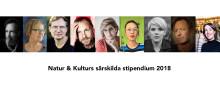 Natur & Kultur ger nio författare stipendium