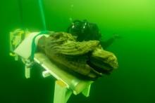 Grävningar på skeppet Gribshunden samlar forskarvärlden – Södertörnsforskare deltar