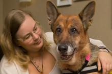 Citrine är Årets sociala tjänstehund