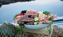 Stor interesse for skalldyr fra Bohuslän