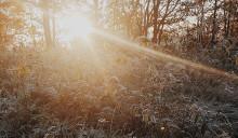 Förhindra D-vitaminbrist - så besegrar du mörkrets onda krafter