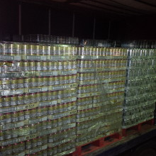 550,000 litres of alcohol seized in Port of Dover operation