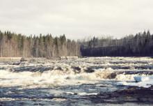 Vattenkraften måste bli miljövänligare