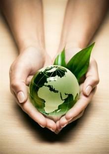 Klimatkompenserat – Eden Springs har lösningarna för miljö- och socialt medvetna kunder