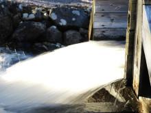 Risk för fortsatt högt elpris i vinter – enligt elbolaget Bixias kvartalsrapport