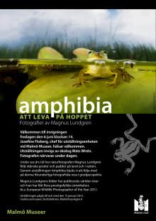 Inbjudan invigning av Amphibia