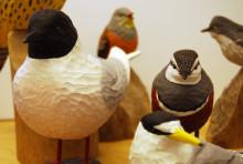 """Välkommen till pressvisning av """" Fågelsträcket""""– en samlingsutställning på fågeltema"""