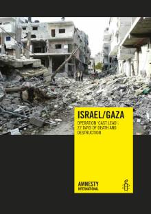 Gaza War Report Death & Destruction