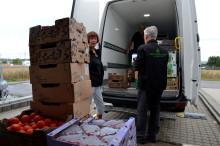 DHL Stafetten i Odense donerer til FødevareBanken