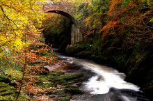 Scotland's autumn colours will delight leaf-peepers