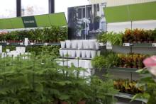 Blomsterlandet flyttar till bättre läge i Borås