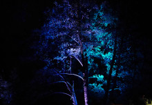 Pressinbjudan: Provbelysning Septemberljus - Södra Munksjöns gångstråk i nytt ljus