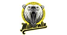Legendariska punkbandet Millencolin på turné