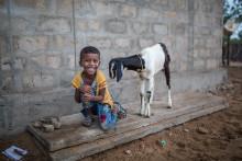 65.000 barn i Norge lærer om Sivatas (5)