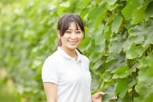 Ny guldårgång av japanska Grace Koshu!