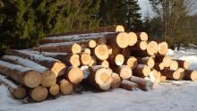 KSLA välkomnar nya ledamöter i Skogsavdelningen