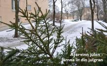 Julgransinsamling 12-13 januari