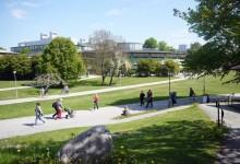Sommarexperter från Stockholms universitet