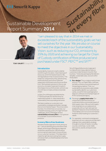 Sustainable Development Report Summary 2014