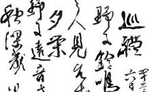 Haiku - Mer än bara en dikt