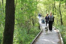 Svaneholm har ett av Sveriges bästa motionsspår