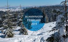 Bilmarknaden februari 2019