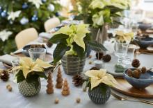 Tips på fina juldukningar