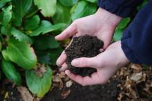 Kend din jord og få mere glæde af haven