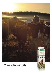 Skånemejerier lanserar ekologisk Blekingemjölk och utökar Smålandssortimentet