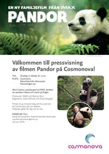 Inbjudan till pressvisning av filmen Pandor på Cosmonova!