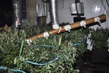 Cannabis farm discovered after house fire in Old Swan