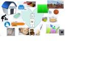Beslut i miljönämnden: Kemikalieplan i Lunds kommun godkänd