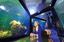 Aquaria Vattenmuseum fyller 25 år!