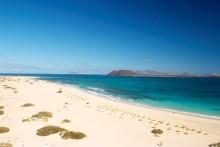 Fuerteventura, Biosfärsområde och Starlight Reserve