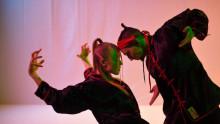 Machokultur, folkdans och kung-fu i höstens dansprogram