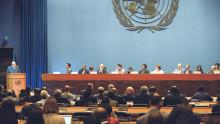 """IVL:s klimatförhandlingsexpert om COP24 i Katowice: """"Det finns förutsättningar för dramatik"""""""