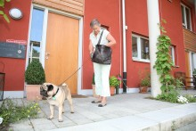 Tierhaltung in Mietwohnungen: Besser vorher das Gespräch suchen