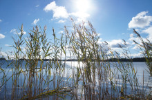 Nu är det dags för strandskyddskontroll kring Husgärdessjön, Bysjön och Skärvalången