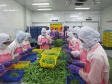Nordiskt initiativ för bättre arbetsvillkor inom livsmedelsindustrin i Thailand – Andy Hall gästar