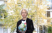Maxat år bäddar för ytterligare hållbarhet 2019